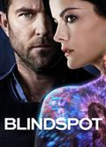 盲點第三季/Blindspot Season 3